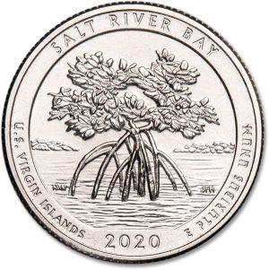 Salt River Bay quarter design